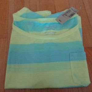 American Eagle Feather Light green/blue stripe tee